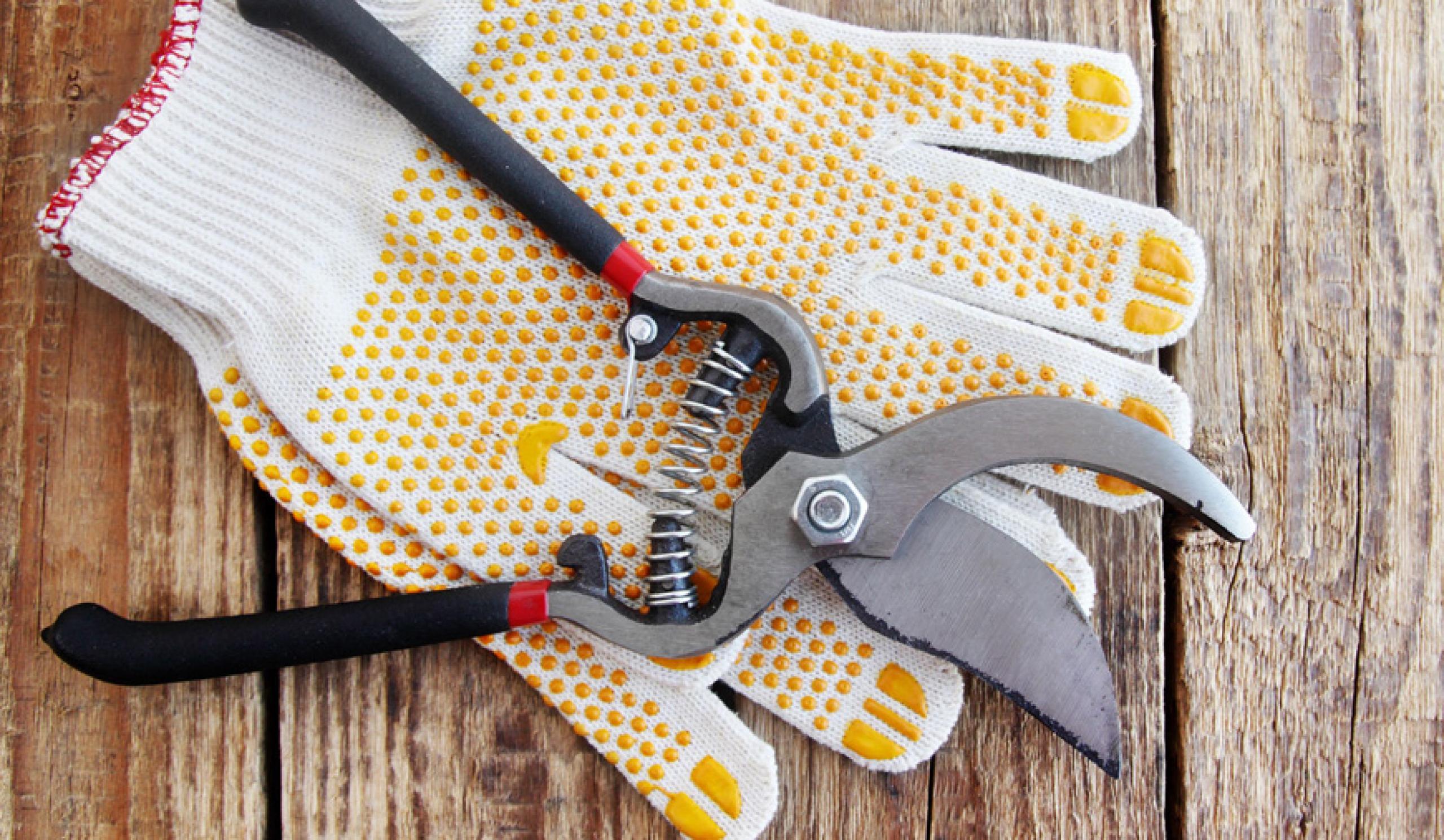 Trabajos de exteriores y mantenimiento del jardín